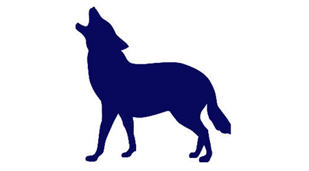 BackwolffLogo